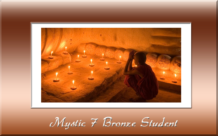Bronze Student Membership for Samadhi Studies